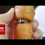 Woman finds long-lost diamond ring on carrot in garden – BBC News