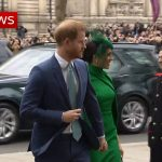 Harry and Megan make final appearance as royals